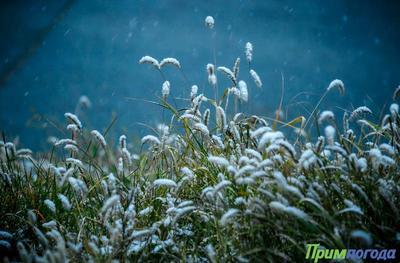 В Приморье резко похолодало и выпал снег
