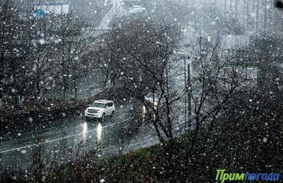 В Приморье ожидается дождь со снегом, на дорогах – скользко