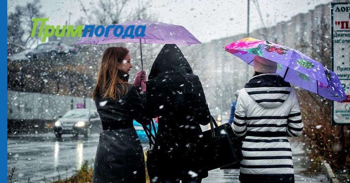 предоставляет погода на неделю в артем приморский край клиенты ООО